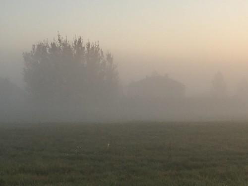 beautiful autumn misty scenery riga осень рига october 2018 appleiphone6plus iphone6plusbackcamera415mmf22 туман утро рассвет жж