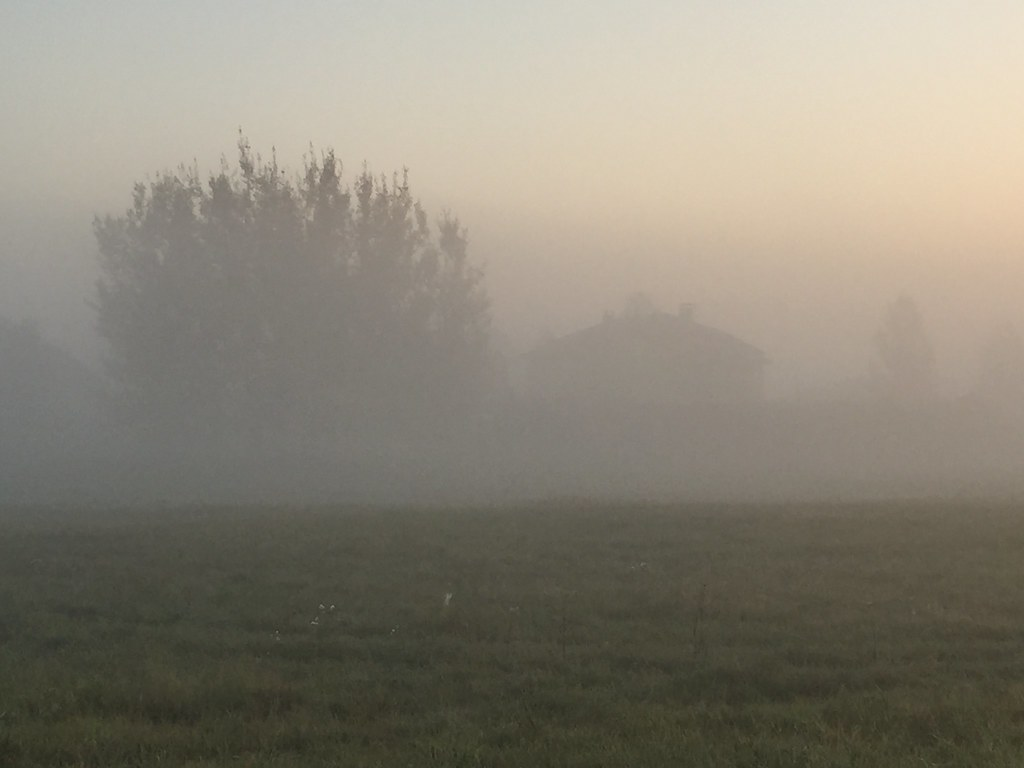 08:21:01 Beautiful autumn misty scenery ...  Мистическая картина!
