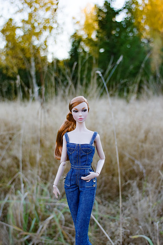 Poppy autumn   by evgenia_dolls