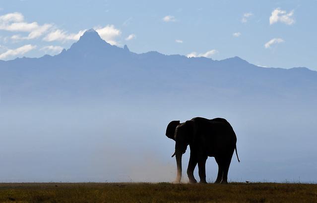 Early Morning at Mount Kenya