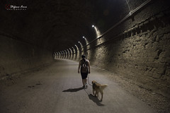 Walking in the tunnel