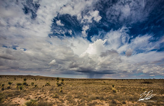 Wild West | by Frank Portillo