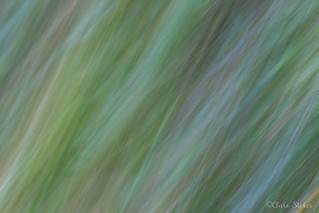 ICM Abstract | by BambersImages