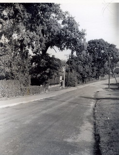 BC47 Skimped Hill, Bracknell (looking down road, before redevelopment)