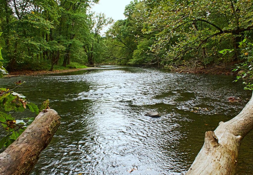 Ramapo Reserve River