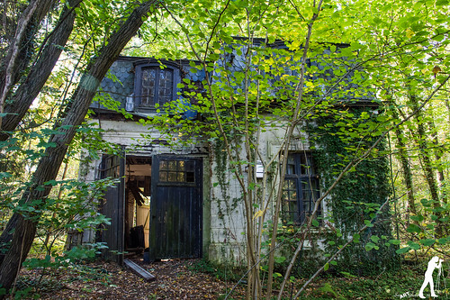 Lost Places: Mansion Percèe | by smartphoto78