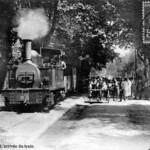 Narrow Gauge Train Arriving