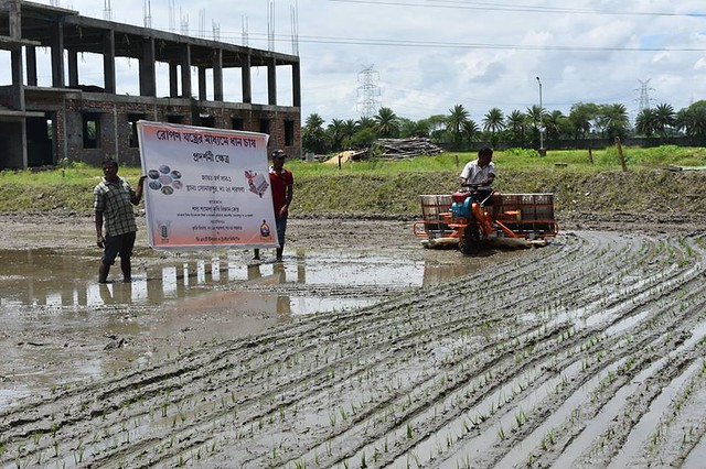 First time use of paddy transplanter at Farmer's field and SSKVK Farm