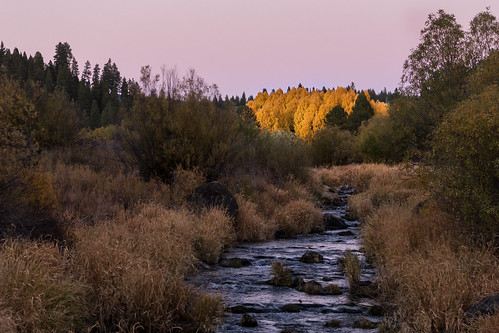 klamathcounty williamsonriver oregon aspens sunset