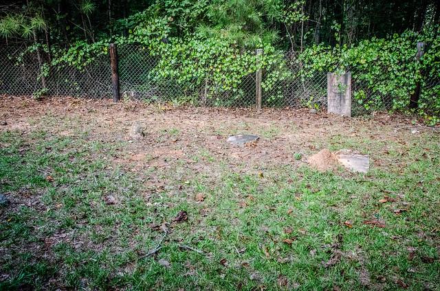 Sardis Methodist Church Cemetery-027