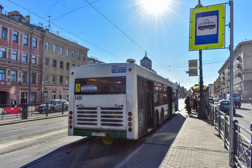 Трамвайно-автобусная выделенная полоса в Петербурге
