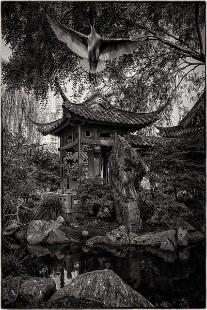 Pagoda and Ibis