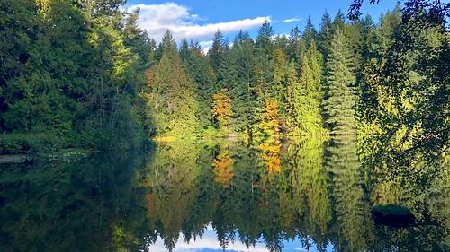 fallcolours lakes nanaimo collierydampark britishcolumbia