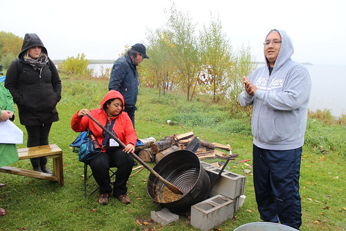 <p>Fall Harvest guests learn to harvest wild rice</p>