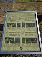 Bird identifier along the Link River Nature Trail
