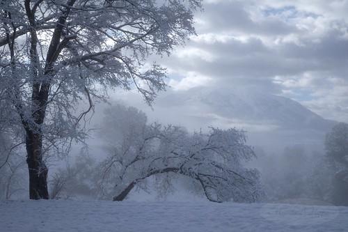 mountain mountsopris sopris carbondale colorado rockies nature outdoor snow fog landscape trees