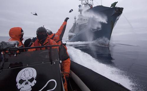 2009-02-02 Sea Shepherd crew member hurls a bottle of rotten butter | by guano