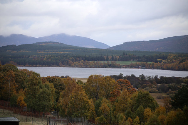 The Cairngorms National Park from Highland Wildlife Park