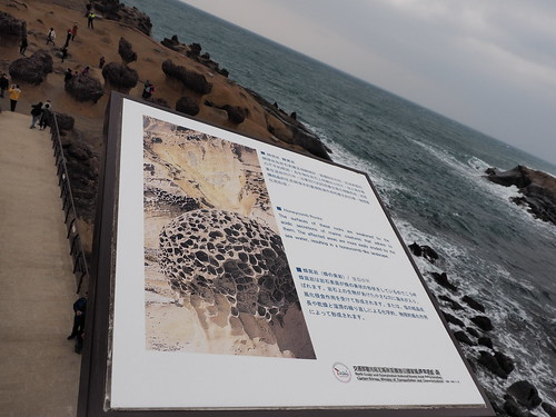 Explanation of the honeycomb-like shape on the rocks at Yehliu Geopark | by huislaw