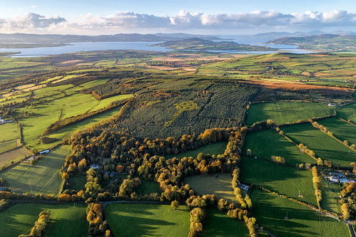 ireland historic history natural gareth wray photography nikon summer landscape landmark tourist tourism scenic visit sight irish county donegal atlantic sea farm view wild way sunset field dji phantom autumn autumnal shed leaves pine needles 4 p4p uav pro professional drone quadcopter aerial tree liam emery evergreen burt castle grainan hill inch miracle legacy famous site attraction island inishowen 2018 celtic forest cross forestry giant sky grass plants