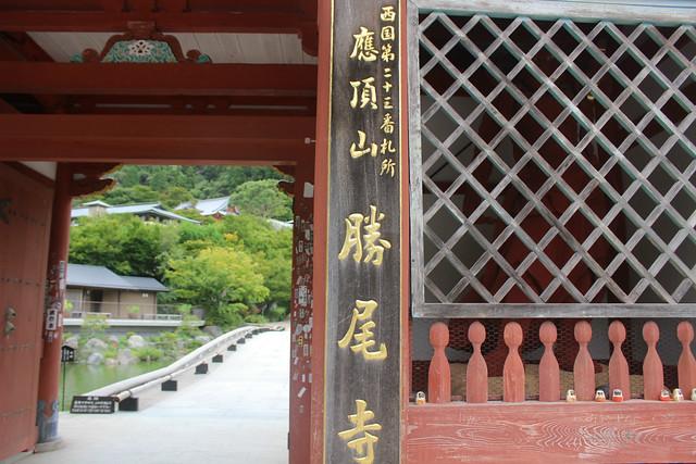 katsuo-ji004