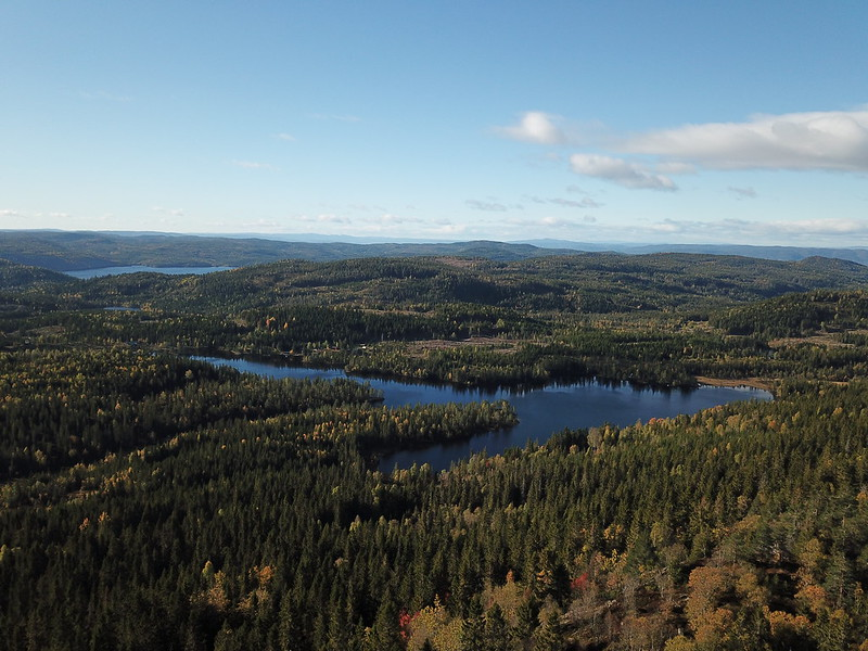 15-Flagervann (drone)