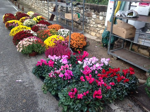 commercants fleurs