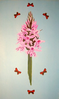 orchid and coppers
