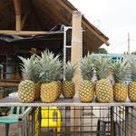Frische Ananas werden in Ecuador am Straßenrand verkauft
