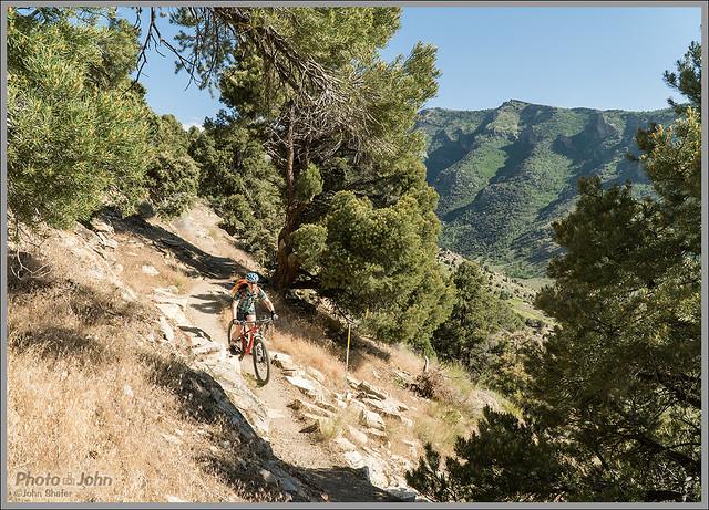 Secret-Lamoille Trail - Ruby Mountains
