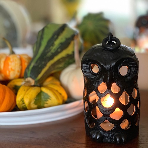 who who who's ready for Halloween #owl #decorativegourds #halloween   by valatal