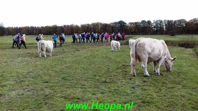 2018-11-07               Baarn SOP           25 Km  (57)
