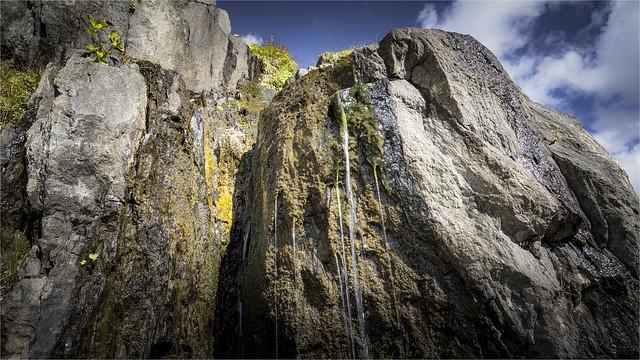_DSC8686 Nature at the Furkapass / Switzerland