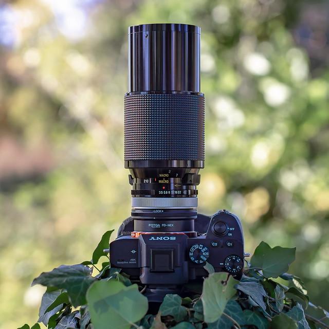 SONY ⍺7III & Vivitar Series 1 3.5/70~210mm Macro seen by SONY ⍺6000 with Canon nFD 1.4/50