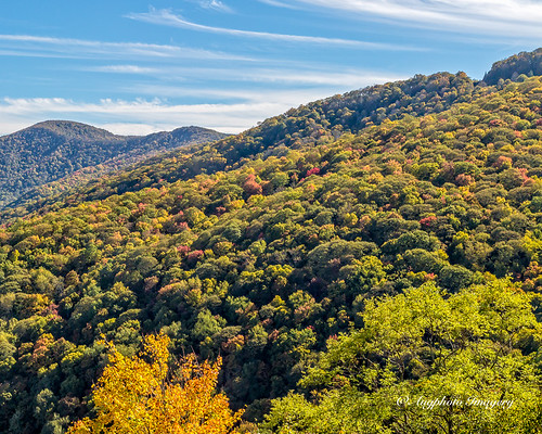 augphotoimagery blueridgeparkway landscape mountains nature outdoors scenic trees waynesville northcarolina unitedstates