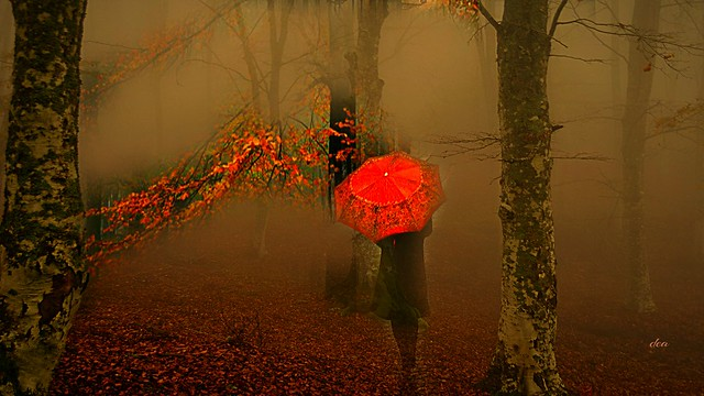 with the umbrella in the autumn fog