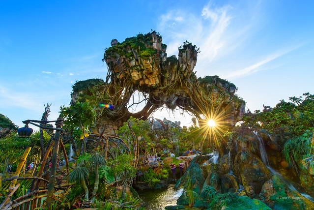 Sunset in Pandora [ Explore ]