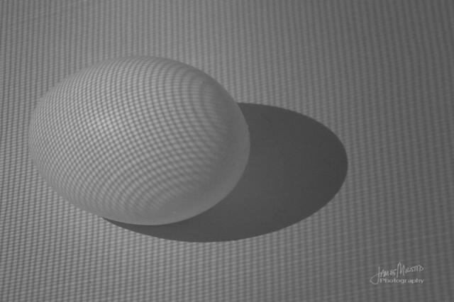Egg and Mesh Shadow [Explored 9-27-2018]