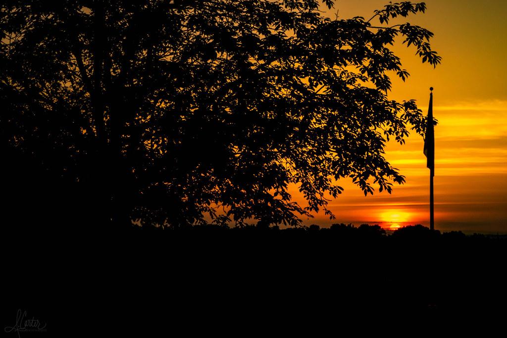 A Lion King Sunset Andrew Carter Flickr
