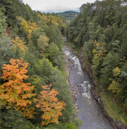 river water landscape canyon gorge trees ottauquecheeriver quecheegorge vermont fallfoliage gseloff