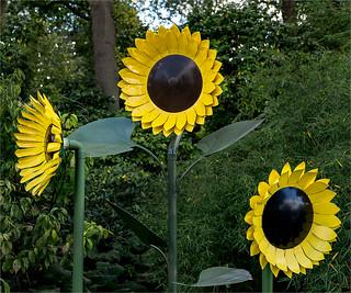 2018-09-07-Wisley-sunflower-sculpture-wq-KT025813