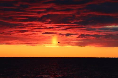 canada sunrise scarborough