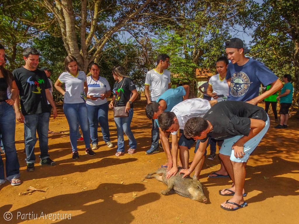 Educação Ambiental - Iporá - Pne21