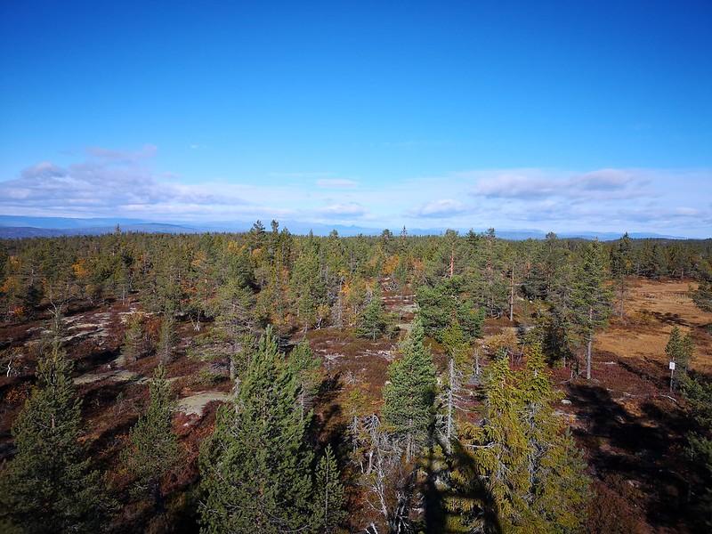 34-Utsikt nordover fra Hovlandsvarden