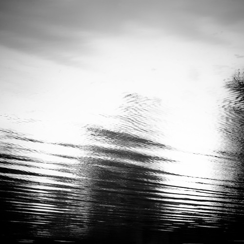 d5000 desplainesriver dof nikon sedgemeadowforestpreserve abstract blackwhite blackandwhite blur bw depthoffield forest landscape minimal minimalism monochrome natural noahbw reflection ripples river sky square summer trees water woods