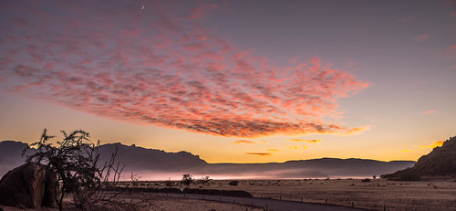 afrique namibie hardap na afric namibia désert etosha fauve dunesoiseaux rapace philippelphotography