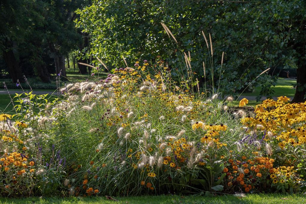 Berlin Gärten Der Welt Spätsommerliches Blumenbeet Gar Flickr