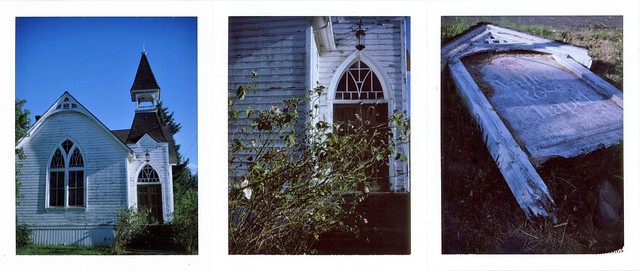 valley rose triptych
