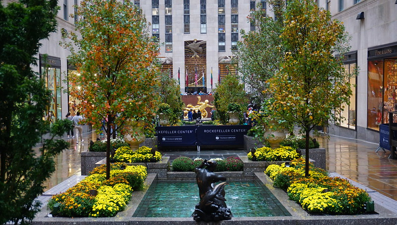 Fall colors in Rockefeller Center, NYC