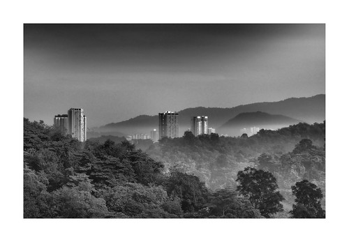 malaysia kualalumpur kl view jungle city urban urbanjungle landscape hills black white monochrome trees nature